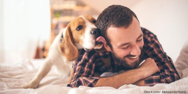 hund freund