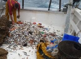 Un día con los pescadores que ayudan a reciclar los residuos del Mediterráneo