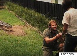 Il fait sortir un crocodile de l'eau pour faire sa demande en mariage