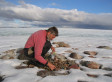 Volcanoes Caused Little Ice Age, Baffin Island Study Suggests