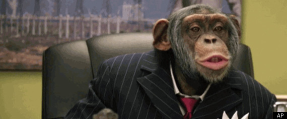 CAREERBUILDER CHIMPANZEE COMMERCIAL