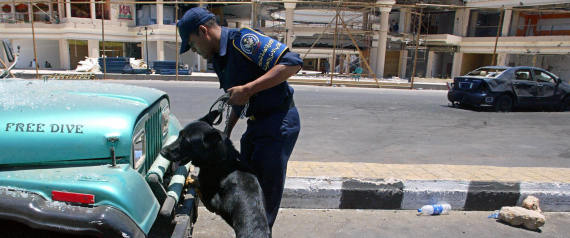 POLICE DOG IN EGYPT