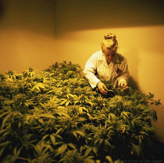women marijuana