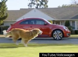 Dog Strikes Back Volkswagen Super Bowl Commercial