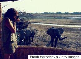 Von Berlin in die Wildnis - meine Ausbildung zur Safari-Rangerin in Afrika