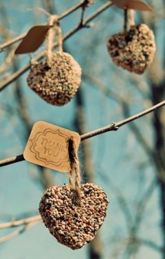 Craft Of The Day Birdseed Ornaments Huffpost