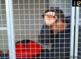 Les larmes de Rémi Gaillard, enfermé dans une cage de la SPA