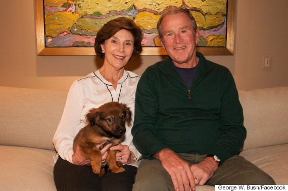 george w bush dog