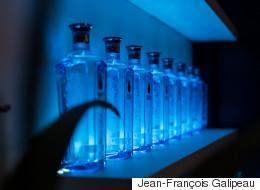 Le gin Bombay Sapphire présente sa nouvelle vedette