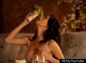 Will Sexy Ads Help PETA?