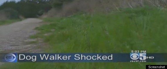 JACKIE SPEIER DOG WALKER