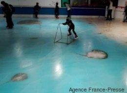 Cette patinoire avec 5000 poissons congelés fait un tollé au Japon