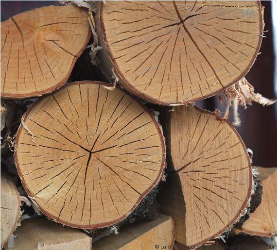 norvegian wood