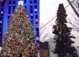 Comment trouvez-vous le sapin de Noël de Montréal?