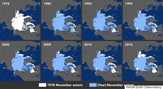 arctic sea ice map