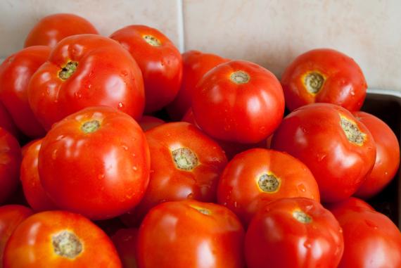 tomatto