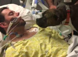 فيديو يحظى بـ 12 مليون مشاهدة على فيسبوك خلال وقتٍ وجيز.. صاحبة المقطع تشكر المستشفى الذي تُوفّي فيه شقيقها