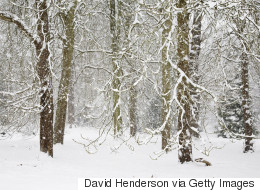La tempête de neige continue dans certaines régions du Québec