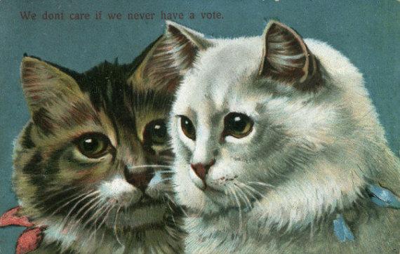 meme de gatos_início do século 20