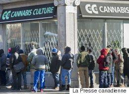 Descentes policières chez «Cannabis Culture»: 9 personnes libérées