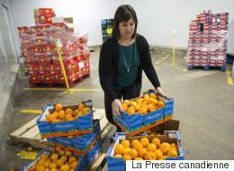 Des politiciens et des bénévoles s'activent pour prêter main-forte à Moisson Montréal