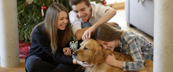 FAMILY DOG CHRISTMAS