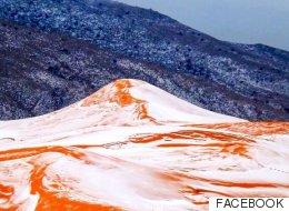 사하라 사막에 37년 만에 처음으로 눈이 내리다