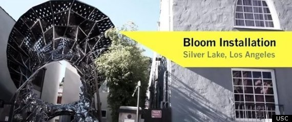 Bloom Silver Lake Boulevard