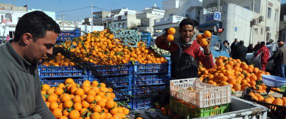 TUNISIA ORANGES
