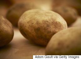 Un champ de patates vieux de 3800 ans découvert au Canada