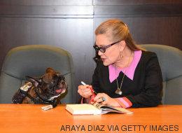 El famoso perro de Carrie Fisher se despide de ella en Twitter
