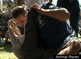Gator Boys Paul Gets Bit On Head