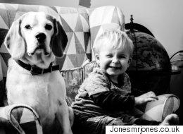 Un père photographie son bébé et son chien chaque mois durant deux ans