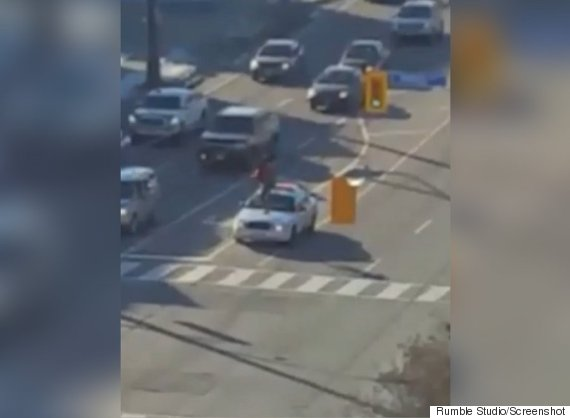 woman stomps police cars