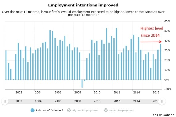 employment intentions canada