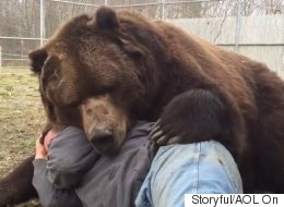 Bear Just Can't Contain The Love He Feels For His Rescuer