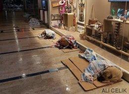 En Estambul las tiendas dan cobijo a los perros durante el temporal