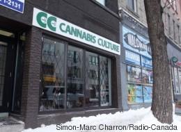 Cannabis Culture rouvrira ses portes, mais sans vendre de marijuana