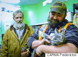 Garbagemen Rescue Frozen, Urine-Soaked Kitten From N.B. Snowbank