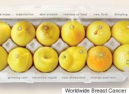이 레몬들이 유방암으로부터 당신을 구할 것이다