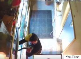 Άνδρας έκλεψε πύθωνα 200 δολαρίων κρύβοντάς τον στον παντελόνι του