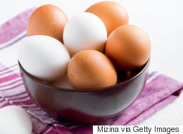 수입 계란이 풀리지 않았는데 계란값이 하락한 이유