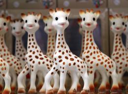 Le fabricant de Sophie la Girafe peine à rassurer les parents après des photos de moisissures