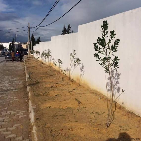 quand 160 jeunes viennent de l 39 tranger pour planter des arbres gammarth. Black Bedroom Furniture Sets. Home Design Ideas