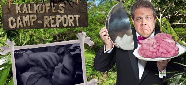Kalkofes Camp-Report: Diese Kandidaten machen das Dschungelcamp zu einer Freak-Show - Video
