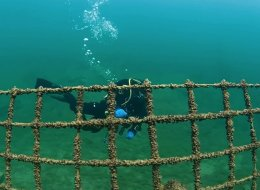 غرق في المياه وتحولت وظيفته تماماً.. سجن يصبح ساحة للتزلج ومسابقات الغوص!