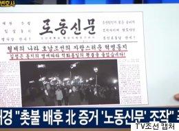 헌재에서 가짜 노동신문을 들고 '촛불집회 종북'을 외쳤던 박근혜 대리인의 변명