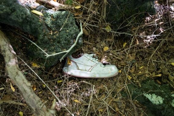 suicide forest japan