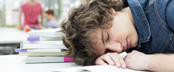 LIBRARY SLEEP