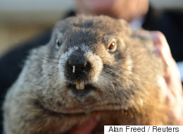 Digging Deep Into The History of Groundhog Day